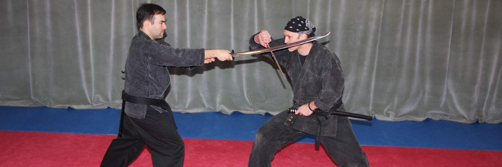 Bujinkan New York Dojo : Westchester Ninja and Samurai